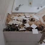 mold rot florida shower removal tile installation