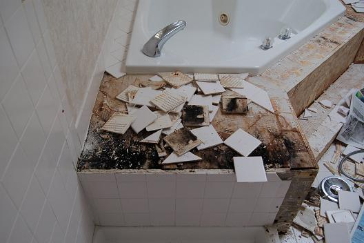 mold rot florida shower removal tile