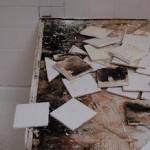 mold rot florida shower tub deck garden tub