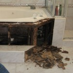 tub_surprise_mold_waterrot