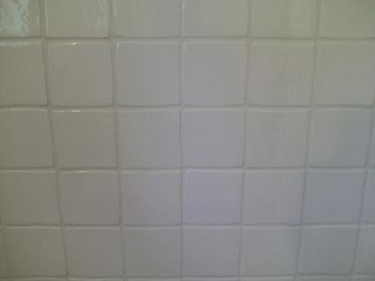 Florida Ceramic Tile Shower Gled Scalloped Wall